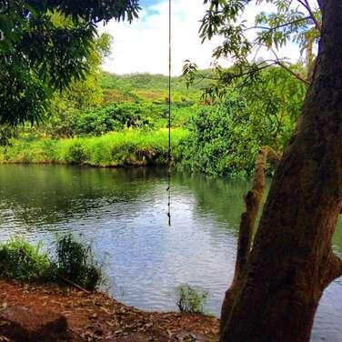 Kauai Lihue